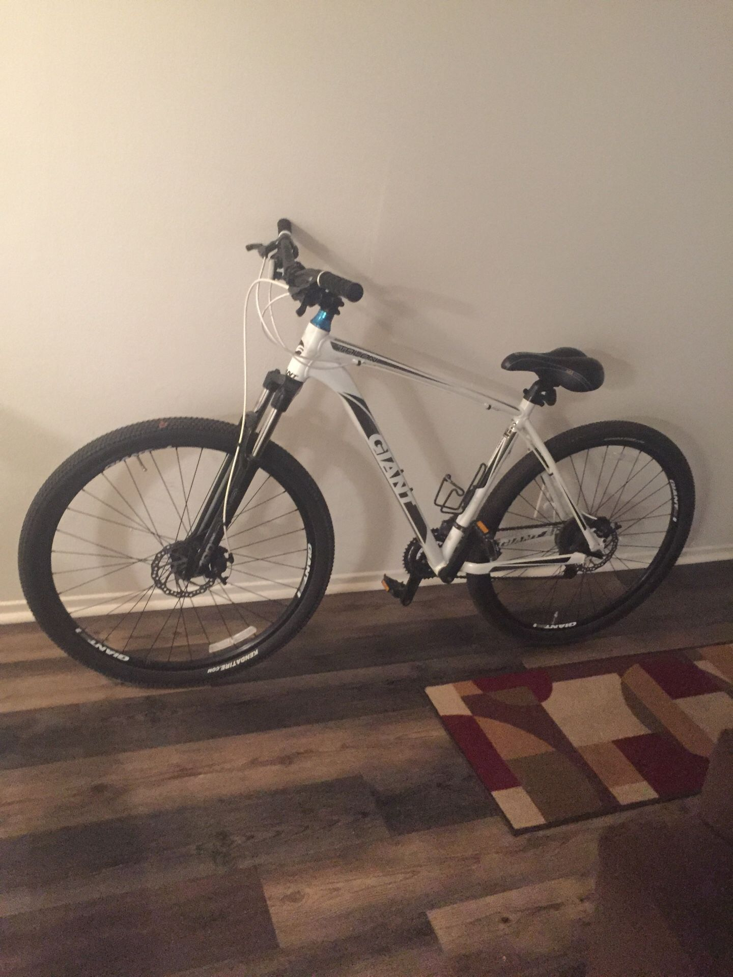 Talon Giant 2. Very good bike in and out