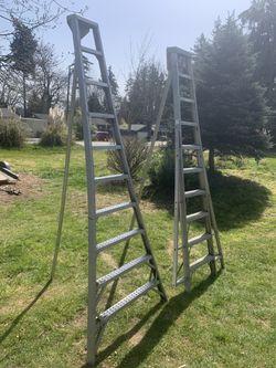 2 Long Ladder $175 And $200 Ladder OBO Thumbnail