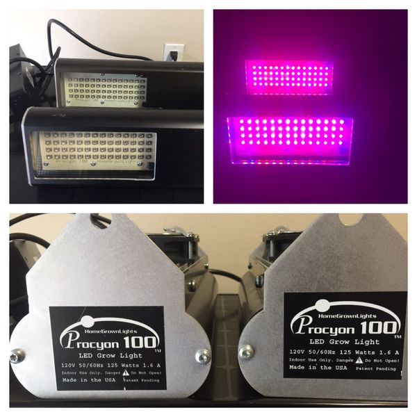 procyon 100 led full spectrum grow light x2 for sale in orlando fl