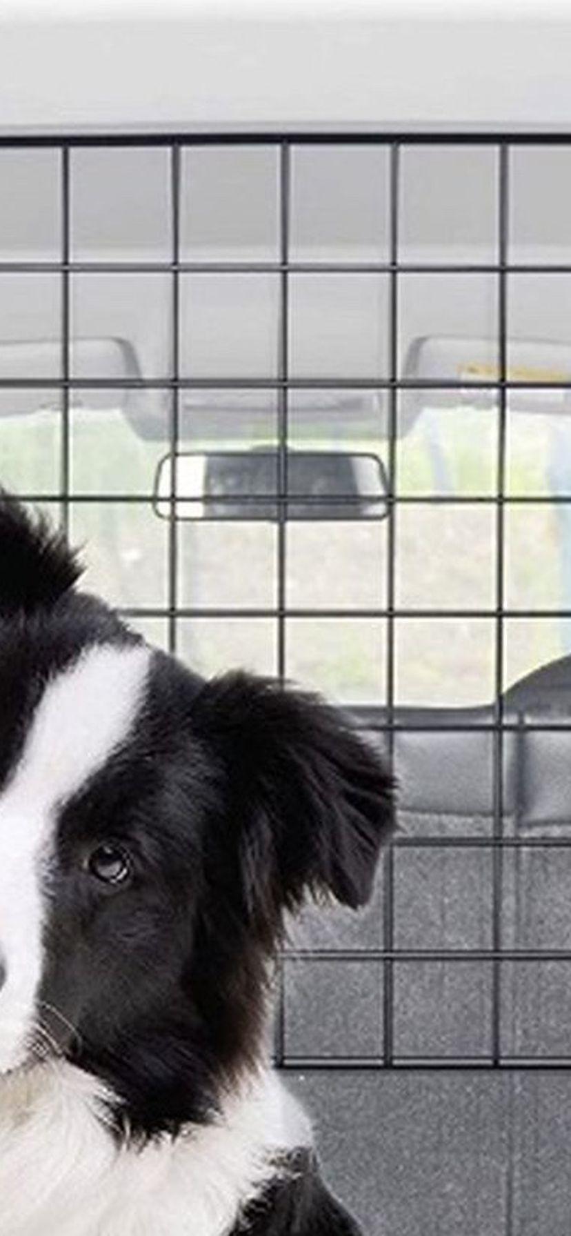 Pet Divider For Car