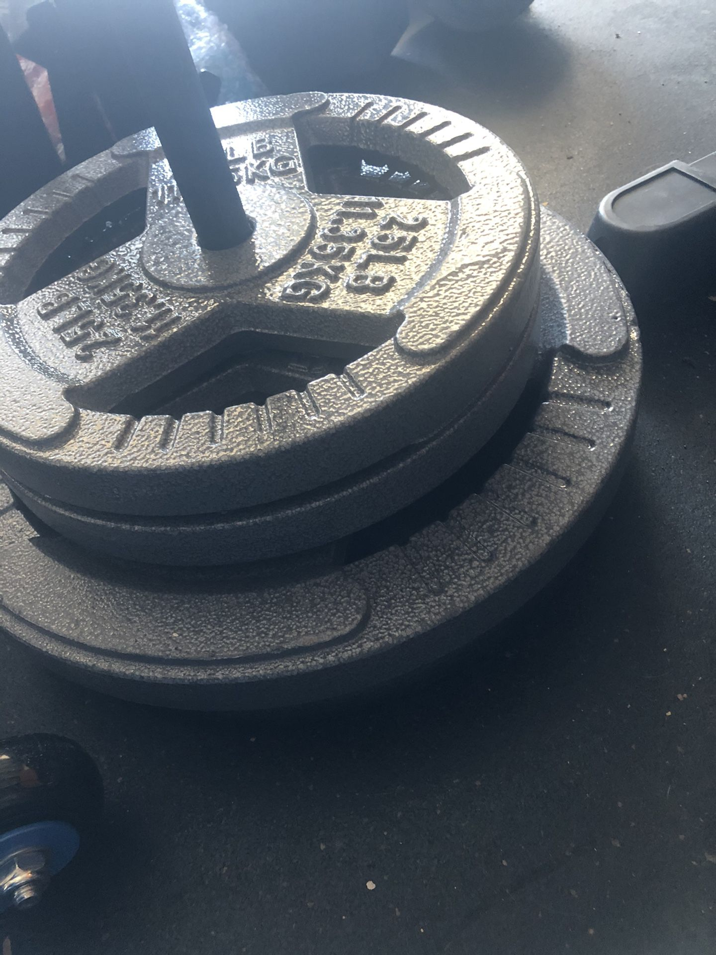 Loading Pin and 140 pounds Standard Plates