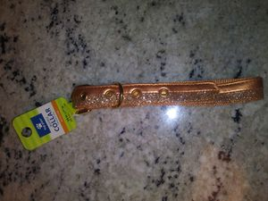 TWO TONE GOLD SPARKLE MEDIUM DOG COLLAR for Sale in Jessup, MD