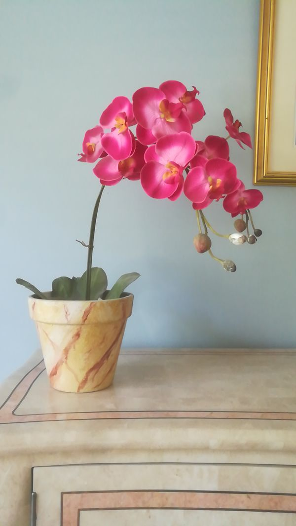 Potted Faux Orchid For Sale In Altamonte Springs Fl Offerup
