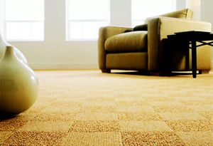 Carpet installation and repair for Sale in Orlando, FL