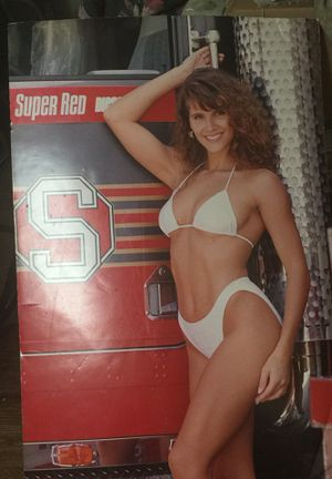 Firefighter issue model poster for Sale in Richmond, VA
