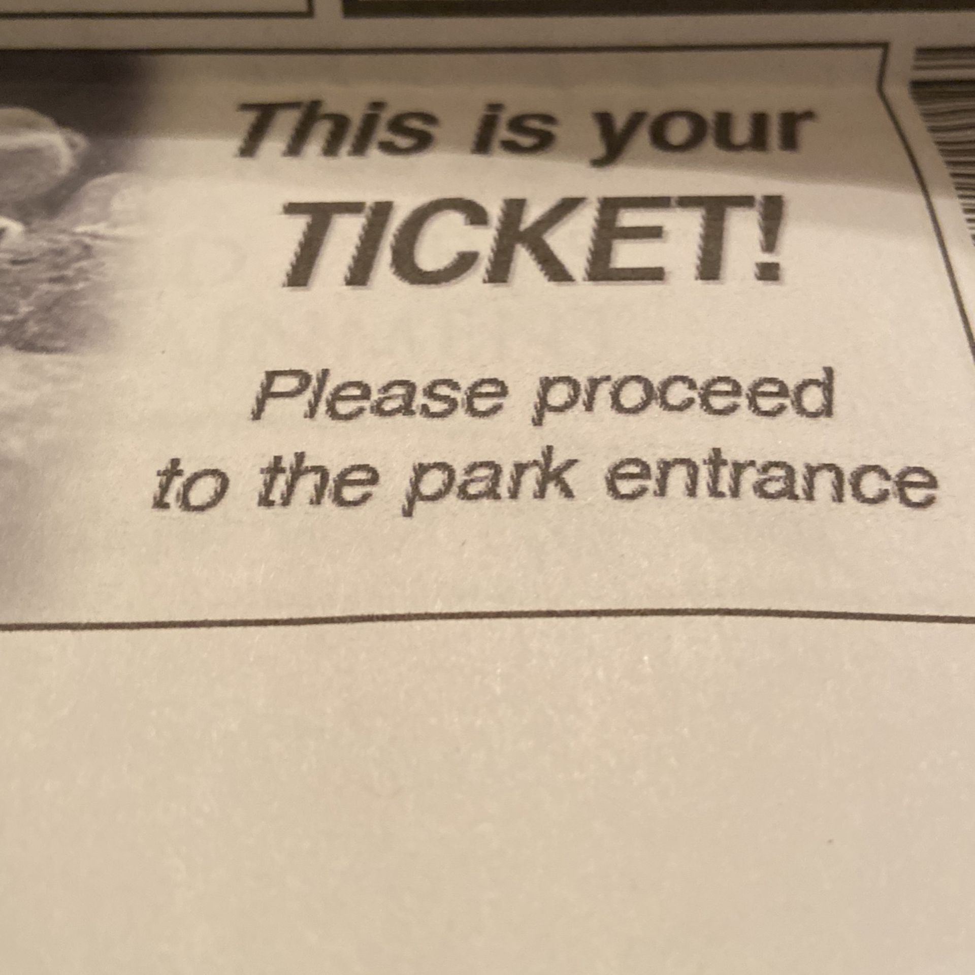 Adult Or Child One Day Any Day Sea World Ticket