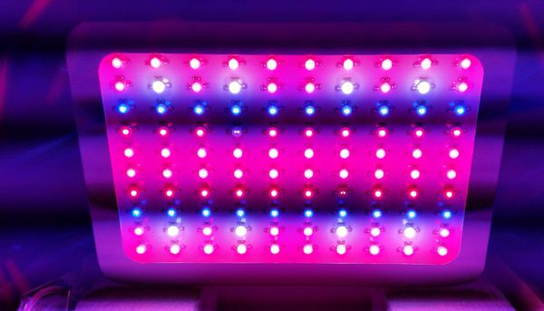 1000w full spectrum led Grow light  IR and UV diodes  More equipment  available: LEDs hps lec cmh tents fans carbon filters and full kits, dwc  for Sale