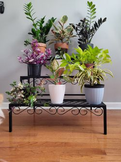 3 Step Plant Stand Thumbnail