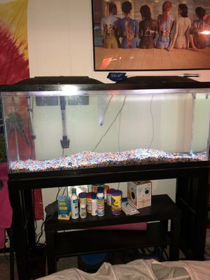 55 gallon fish tank with stand and all equipment for Sale in Wheaton, MD