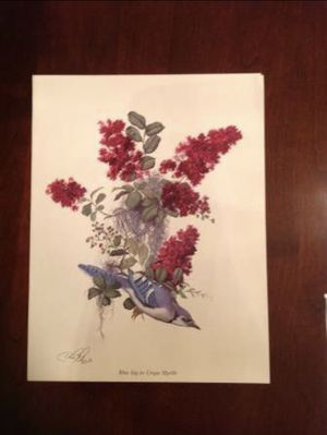 Beautiful Carol Riley Watercolors for Sale in Sanford, FL