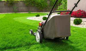 Grass cutter , good prices , great results. for Sale in Burke, VA