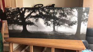 Meadow frame 55x22 for Sale in Rockville, MD