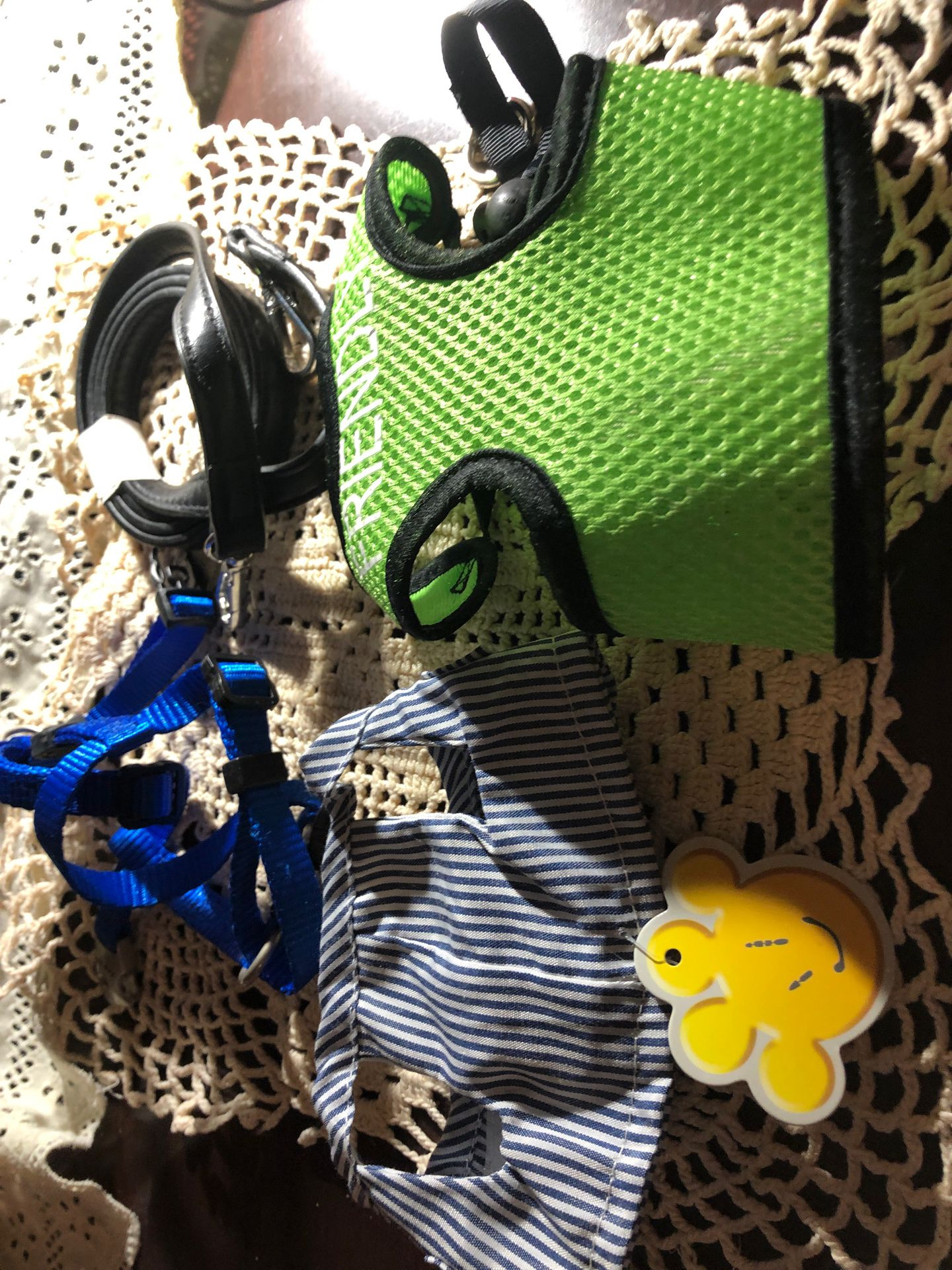 Under 5lbs dogs leash and harness