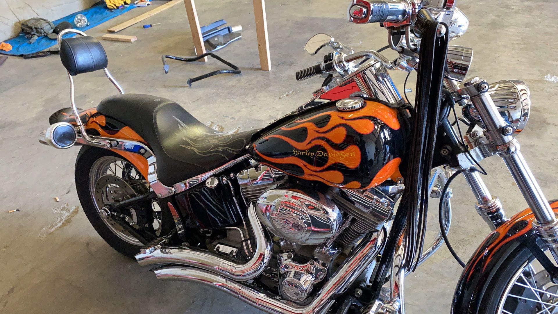 Photo Harley Davidson Softail Custom