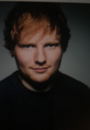 Ed Sheeran Ticket - Section 137, row CC, seat 20. $150. for Sale in Tampa, FL
