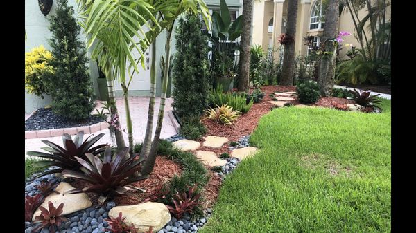 Landscaping Plants For Sale In Davie Fl Offerup