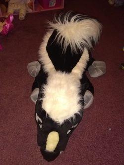 Large skunk...rare Thumbnail