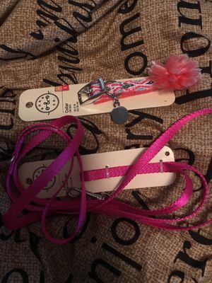 Dog collar and leash for Sale in Sanford, FL