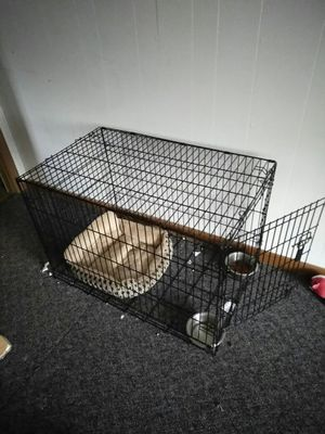 Lg dog crate for Sale in Edgewood, MD