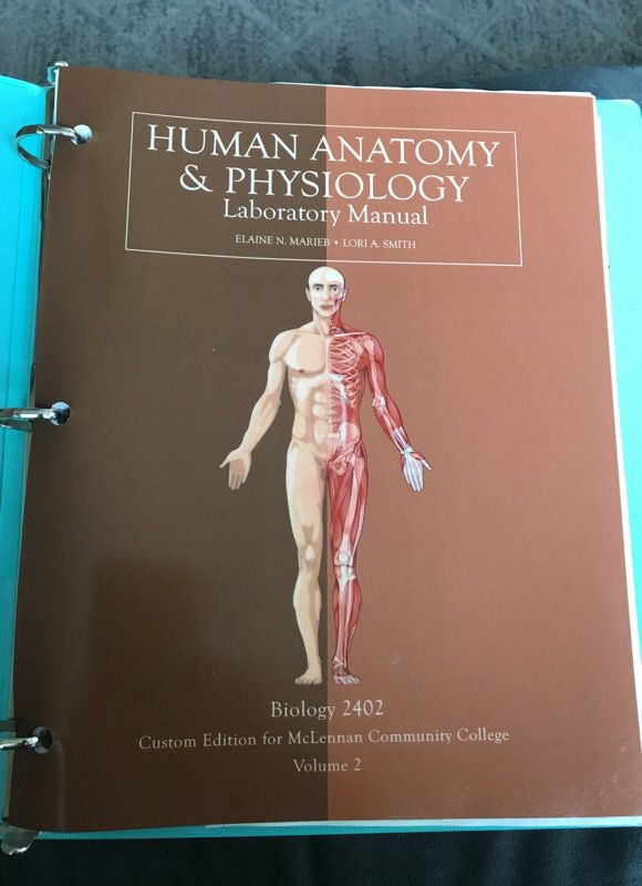 Human anatomy and physiology 1 book for Sale in Waco, TX - OfferUp