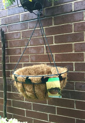 "16"" Green Decorative Coconest Basket/new for Sale in Chicago, IL"