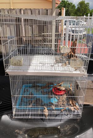 Bird cage for Sale in Opa-locka, FL