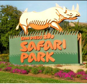 SAFARI PARK. 6 Tickets includes all rides free inside. $40 each firm. No Less. Expires 01/11/2019 I can sell separate or all together. for Sale in San Diego, CA