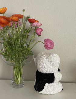 Musician Rose Bears  Thumbnail