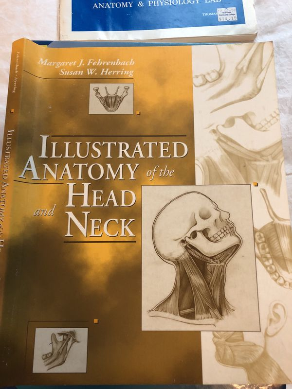 Illustrated Anatomy of the Head and Neck for Sale in Coral Springs ...