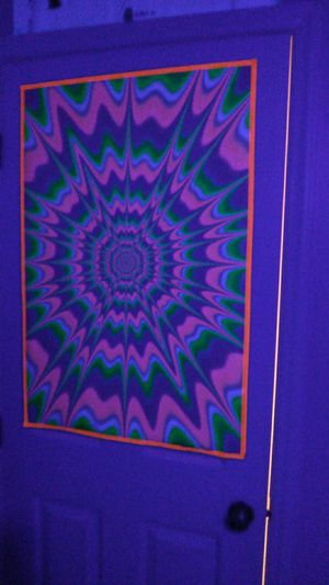 4 black light bulbs 23 watt 100 watt output with 2 posters for Sale in Raleigh, NC