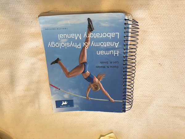 Anatomy Physiology Lab Manual For Sale In Euless TX OfferUp