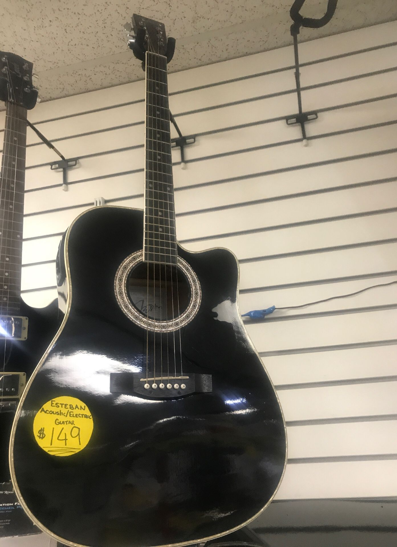 Esteban acoustic/electric guitar
