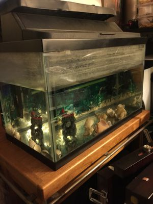 10 gl fish Tank for Sale in Springfield, VA