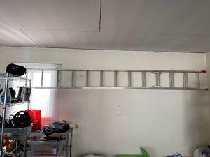 "Photo 16' 11"" Werner Expandable Ladder"