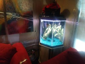 50 gal. Hexagon Aquarium w/fluval fx5 for Sale in Columbus, OH