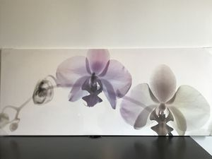 "55""x22"" Orchid by Hugh Turvey. Bought from IKEA (like new) still in original packaging, never removed. for Sale in Boston, MA"