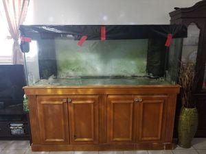 200 Gallon Aquarium For Sale In Lake Worth FL