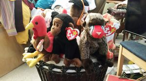 TY beanie babies make an offer on one or all! for Sale in Montgomery Village, MD