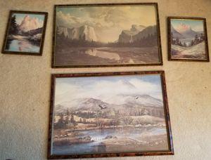 Mountain view scenes for Sale in Centreville, VA