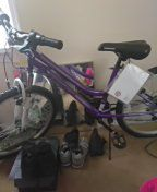Roadmaster girl bike for Sale in Washington, DC