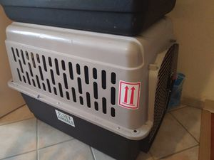 Air Travel Pet Kennel for Sale in Joint Base Andrews, MD