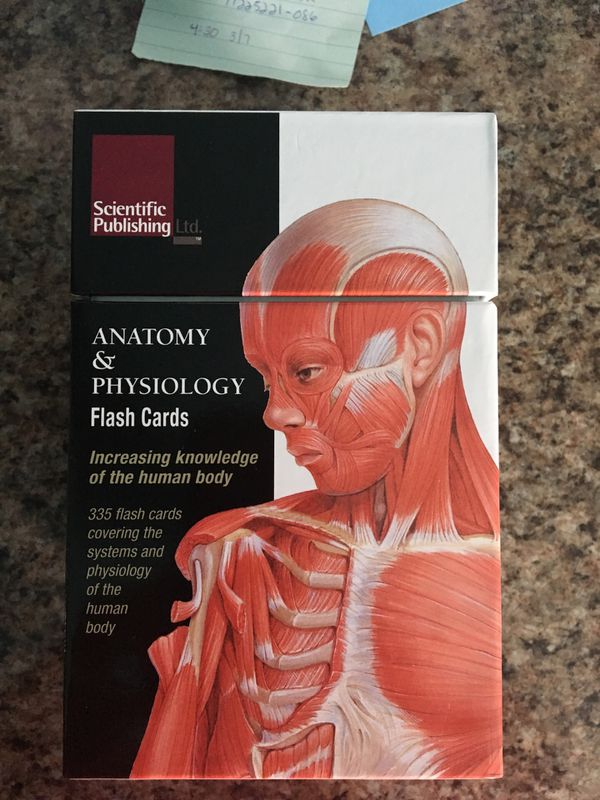Anatomy Physiology Flash Cards For Sale In Buffalo Ny Offerup