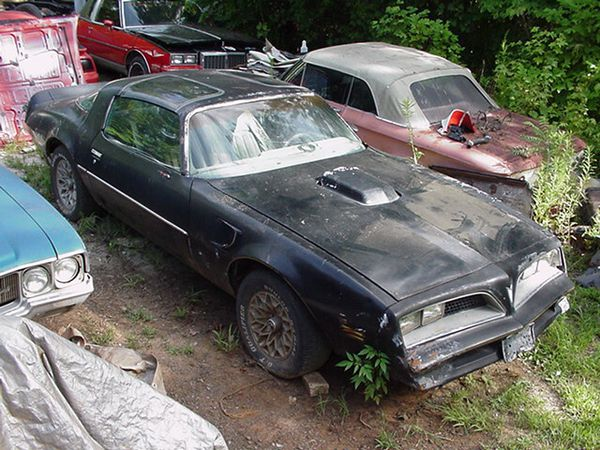 I'm Looking For 1977-78 Pontiac Trans Am Project Car for Sale in San