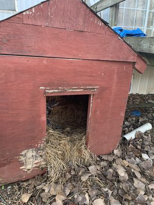 New And Used Dog House For Sale In Nashville Tn Offerup