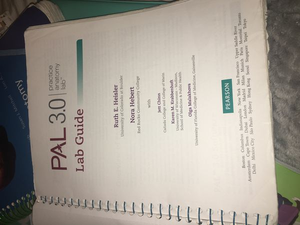 P.a.l. 3.0 Practice Anatomy Lab Lab Guide (Books & Magazines) in ...