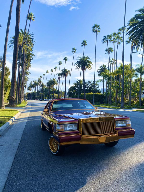 1991 CADILLAC FLEETWOOD LOWRIDER for Sale in Los Angeles ...