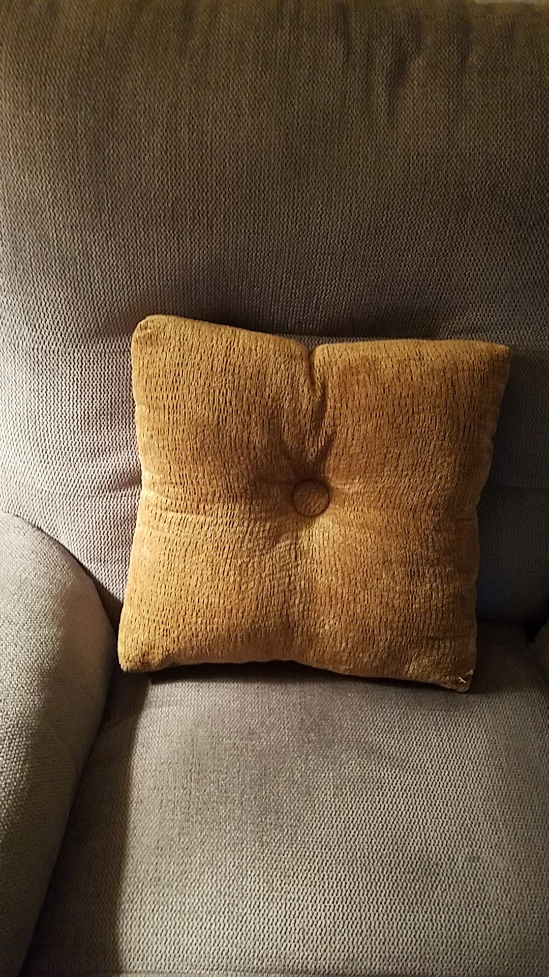 Beige Pillow Smoke and pet free home