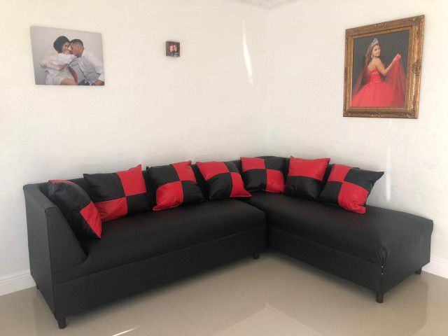 Furniture sectional . New