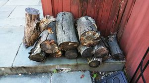 Free Seasoned Wood for Sale in West Springfield, VA