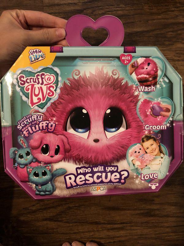 Scruff A Luv Little Live Pets For Sale In Orlando Fl